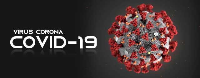 apa itu virus corona - apa itu covid-19 - covid 19 adalah - virus corona adalah - dunia hatori